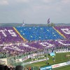 Study Abroad at the stadium
