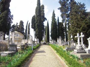 english cemetery florence :. by Joelle Edwards