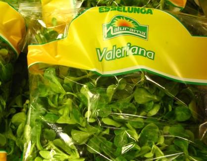 Valeriana Leaf Vegetable