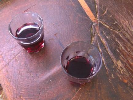 New Wine Firenze Italia