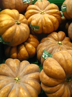 Pumpkins in Florence Italy