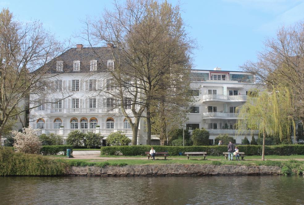 House Weeping Willow Tree Alster Lake Hamburg