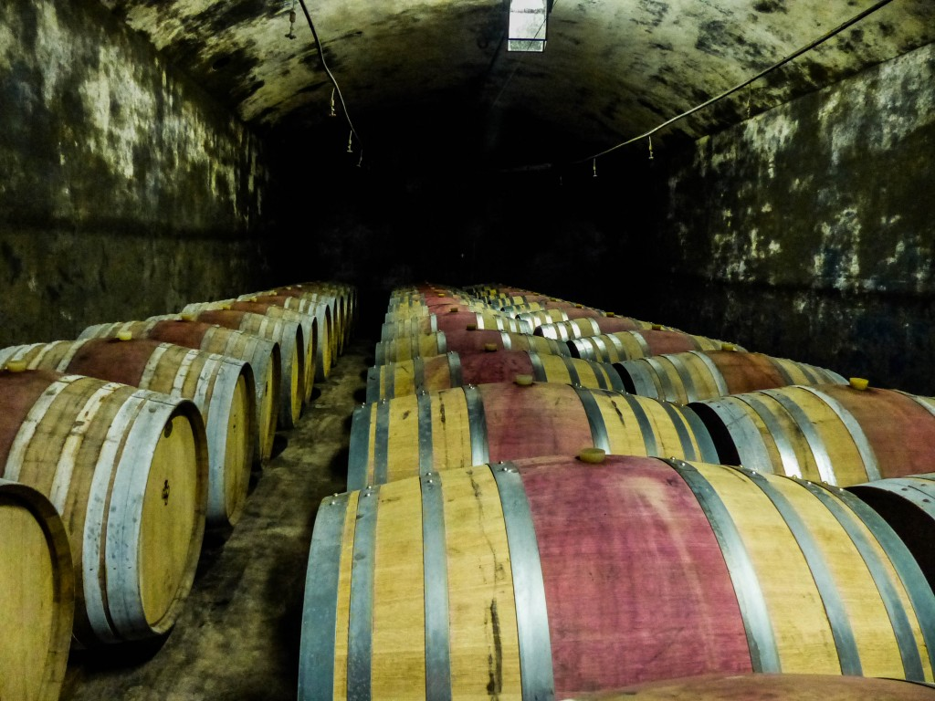 Wine Barrels in Italy