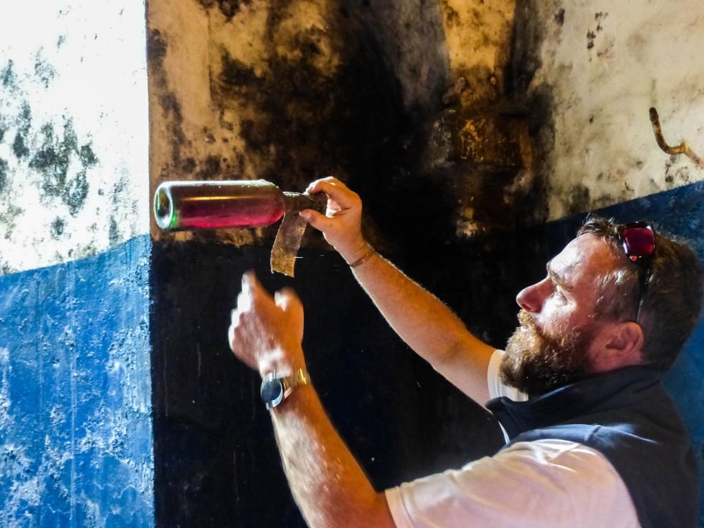 IBike Wine tour in Tuscany