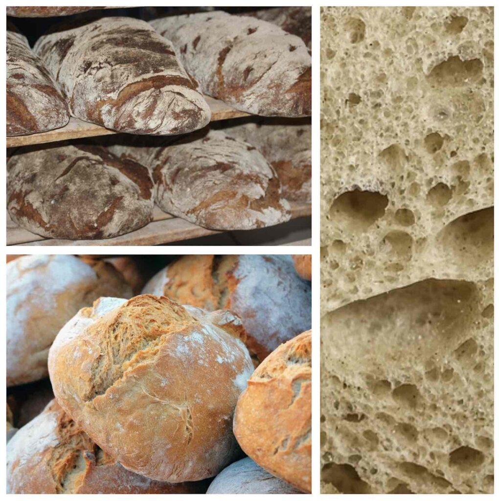 types bread italy