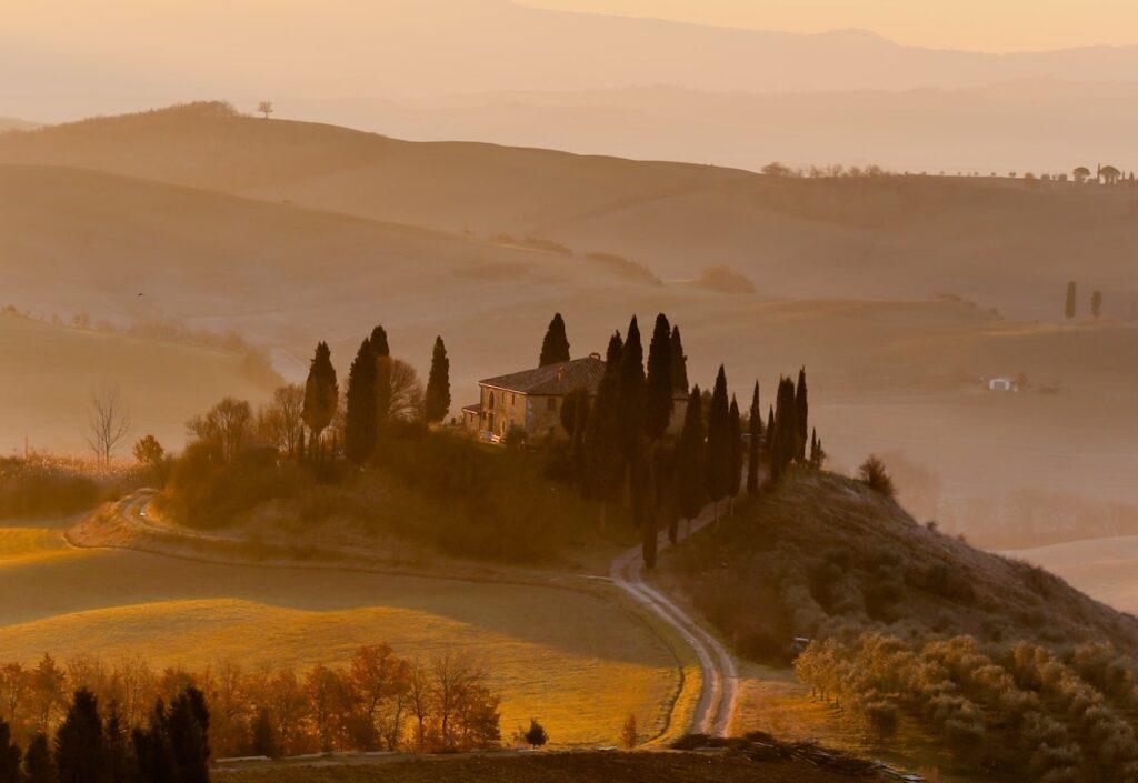 tuscany olive tour italy