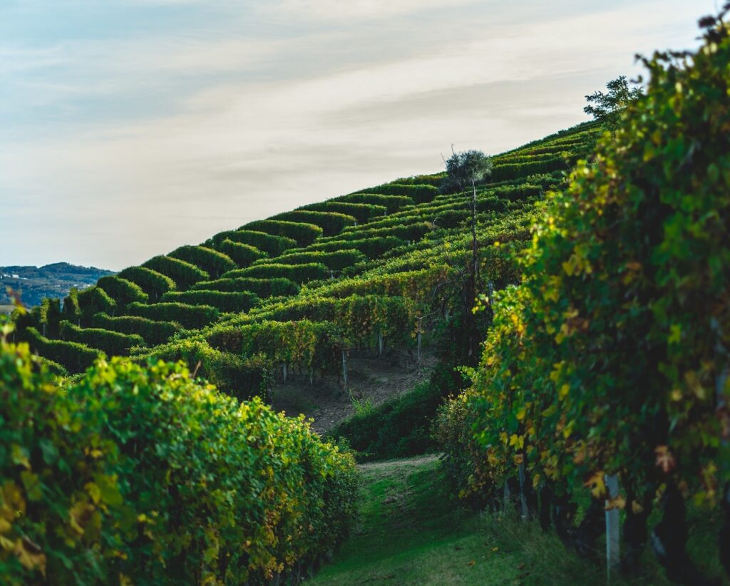 langhe italianway experience